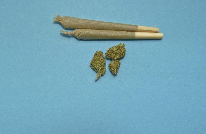 Marijuana damages young brains